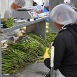 Sorting Asparagus