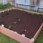 Sirins Garden